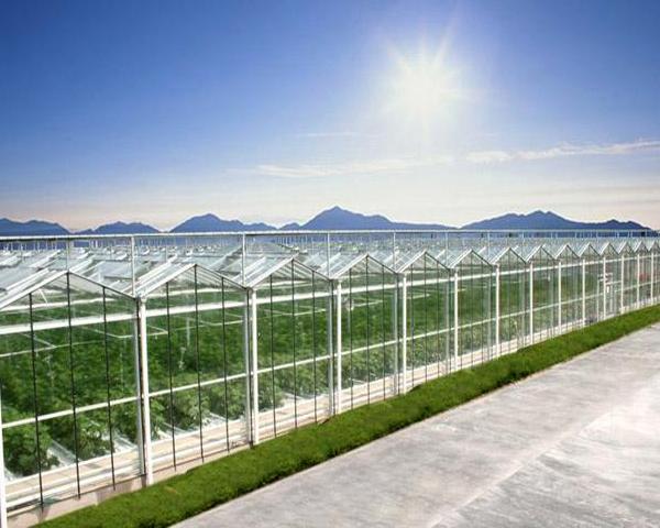四川智能玻璃温室大棚
