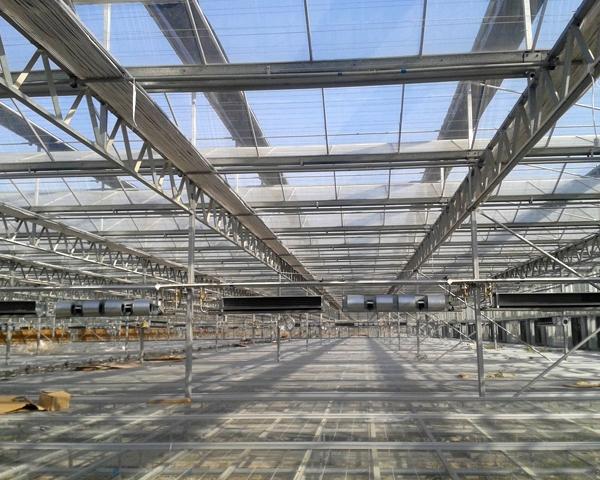 钢结构蔬菜大棚