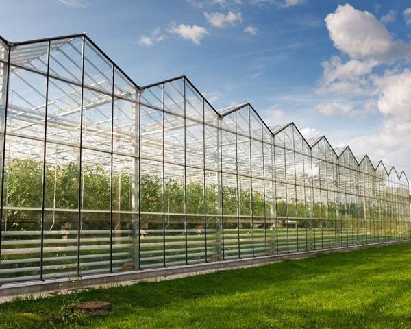 玻璃连栋温室大棚