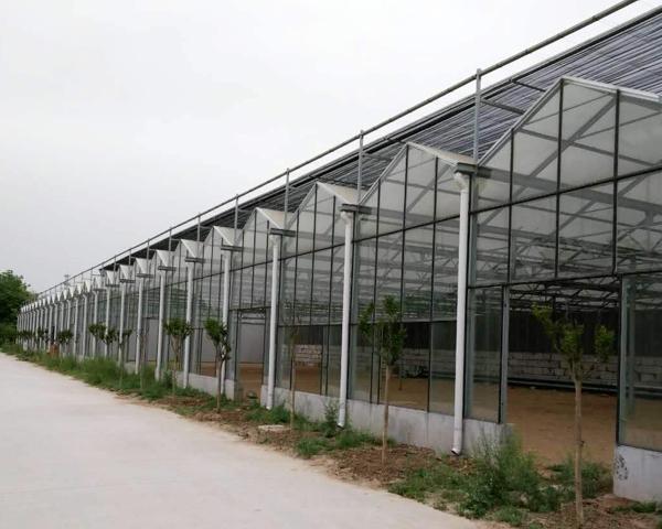 山西智能玻璃温室大棚