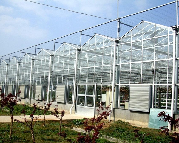 河南智能玻璃温室大棚