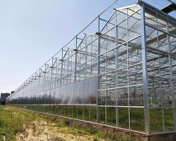 山东智能玻璃温室大棚